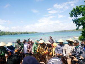 Walikota dan Forkopimda Kota Tual panen raya rumput laut di Teluk Luv